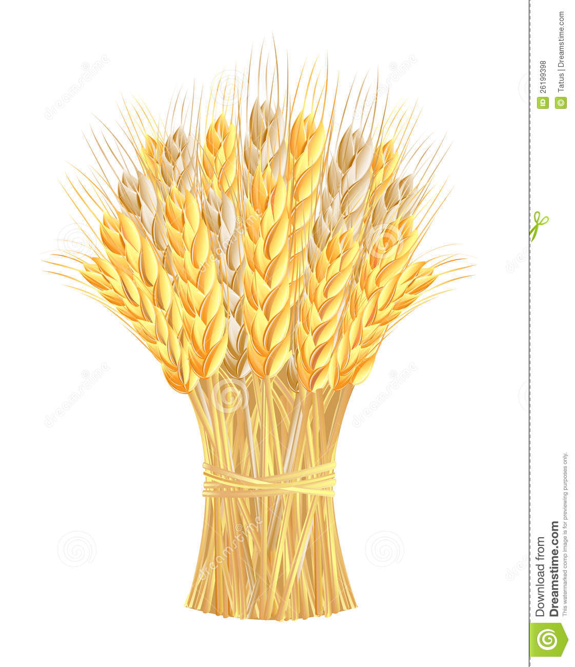 Wheat Bundle Clipart Sheaf Of Wheat Ears Royalty