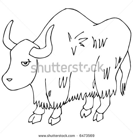 Yak clipart black and white - photo#10