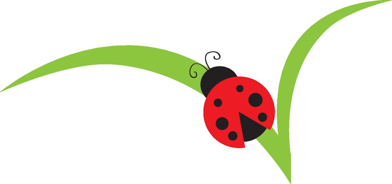 Ladybug On Leaf Clipart - Clipart Kid