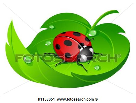 Clipart   Ladybug On Leaf  Fotosearch   Search Clip Art Illustration