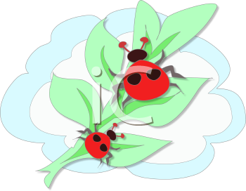 Find Clipart Ladybug Clipart Image 49 Of 113