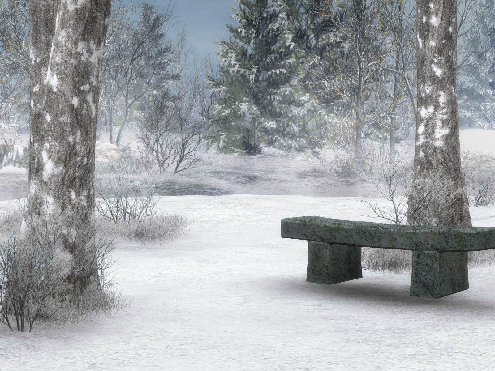 Winter  137