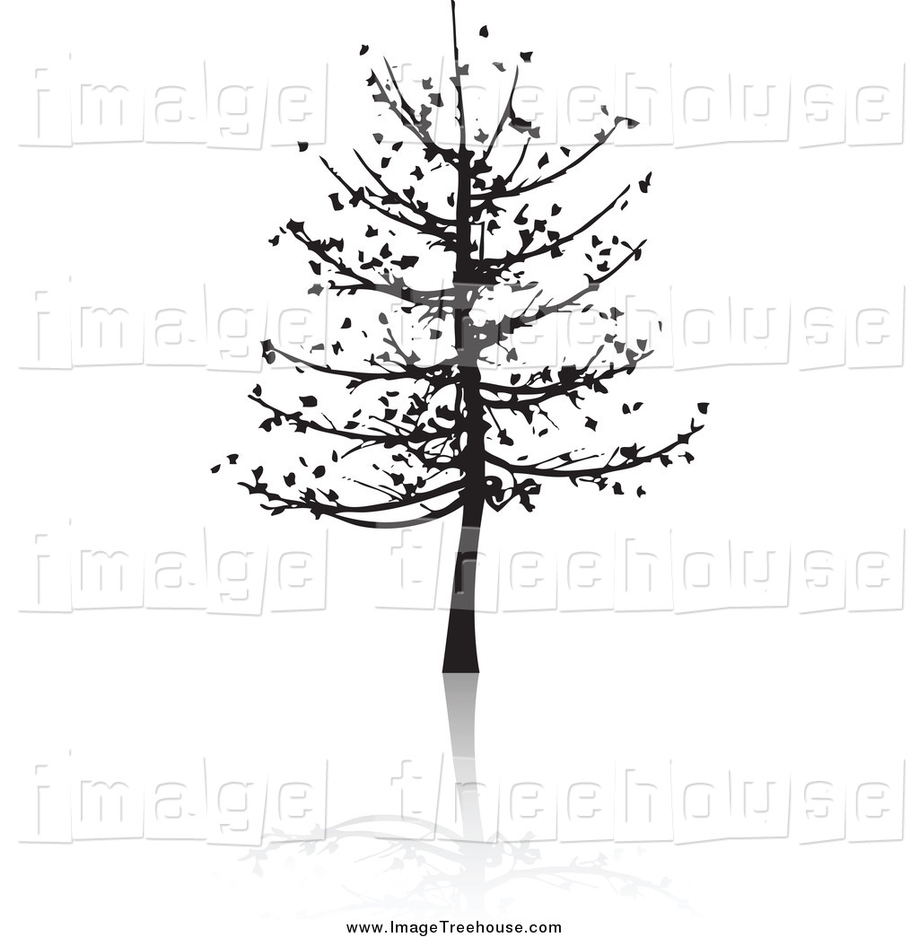 Bare Tree Silhouette And Reflection Tree Clip Art Kj Pargeter