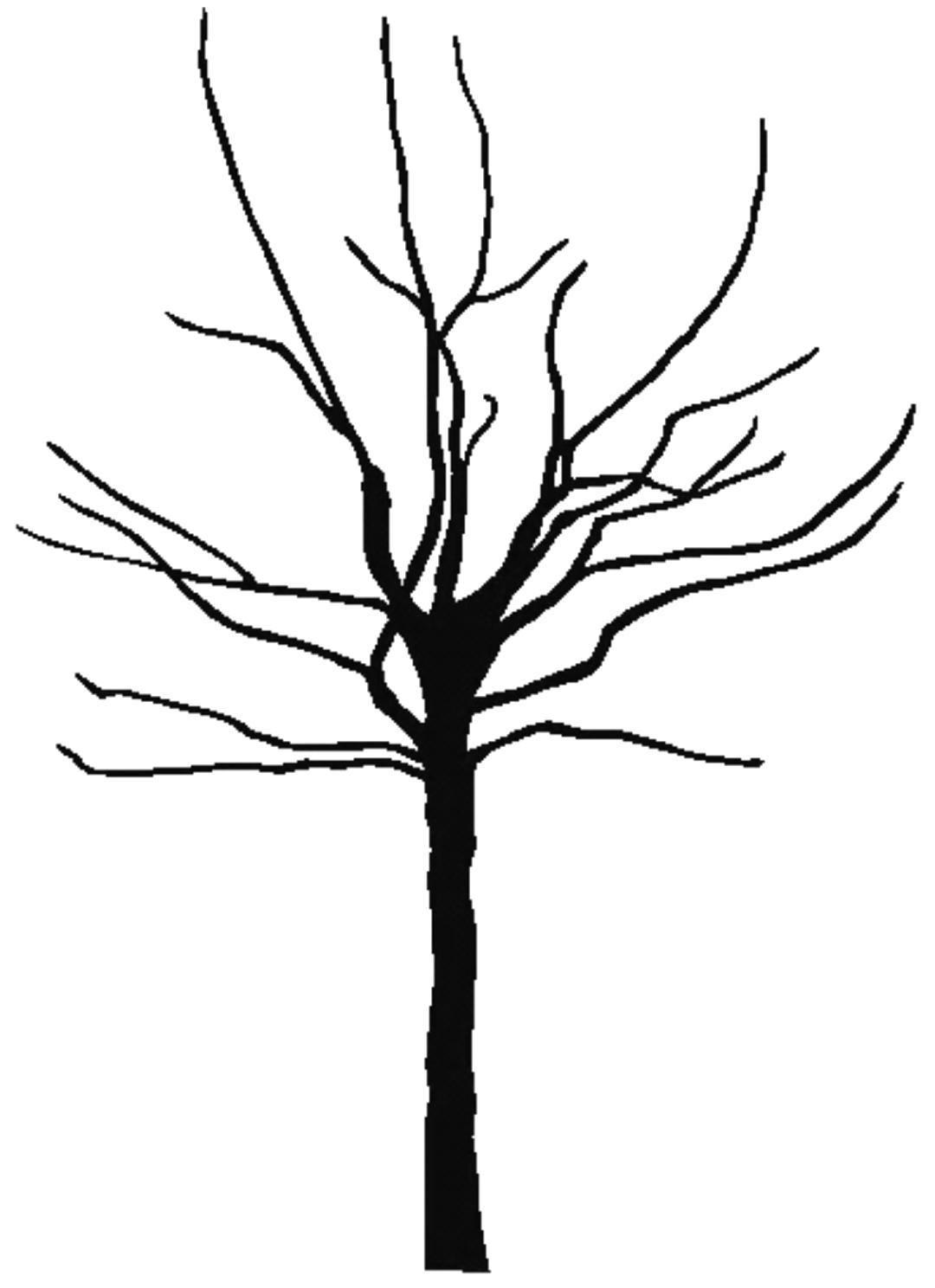 bare fall tree clip art - photo #22