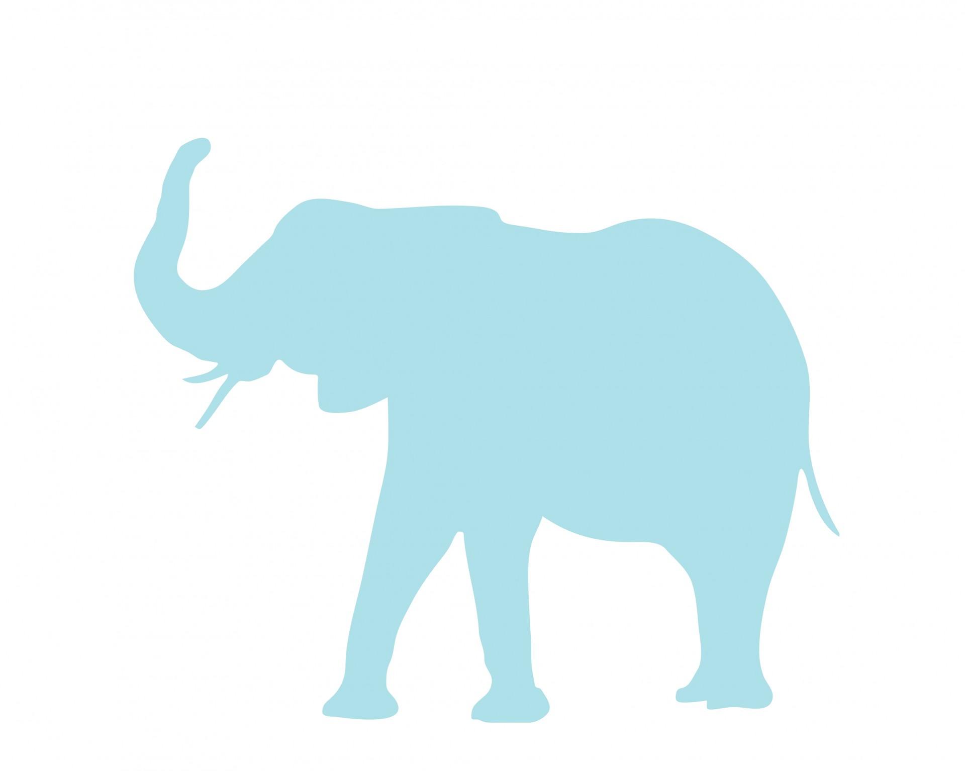 Elephant trunk clipart