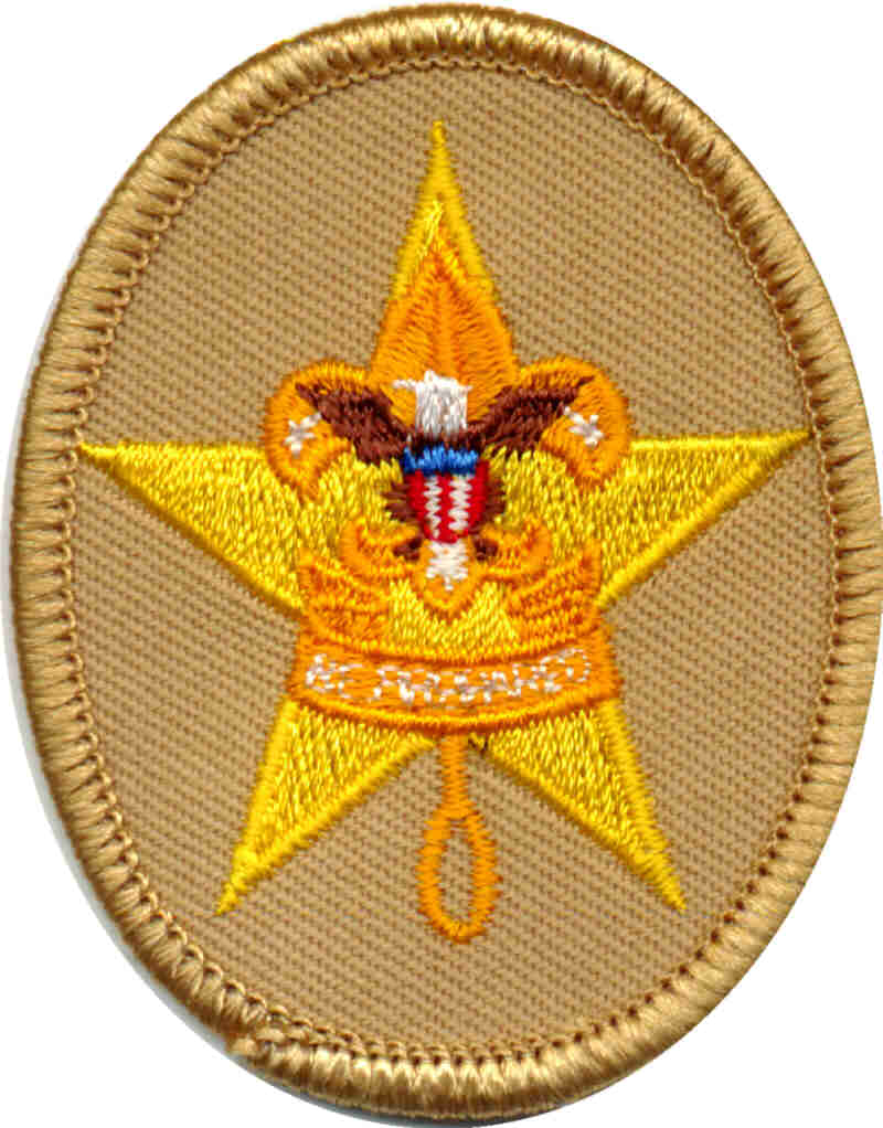 Scoutmaster Bucky   Boy Scout Ranks And Requirements