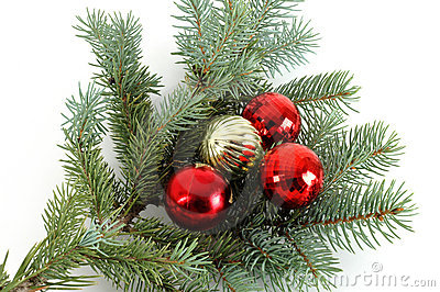 Decorated Christmas Bough 3 Royalty Free Stock Photography Image #poQUaa - Clipart Kid