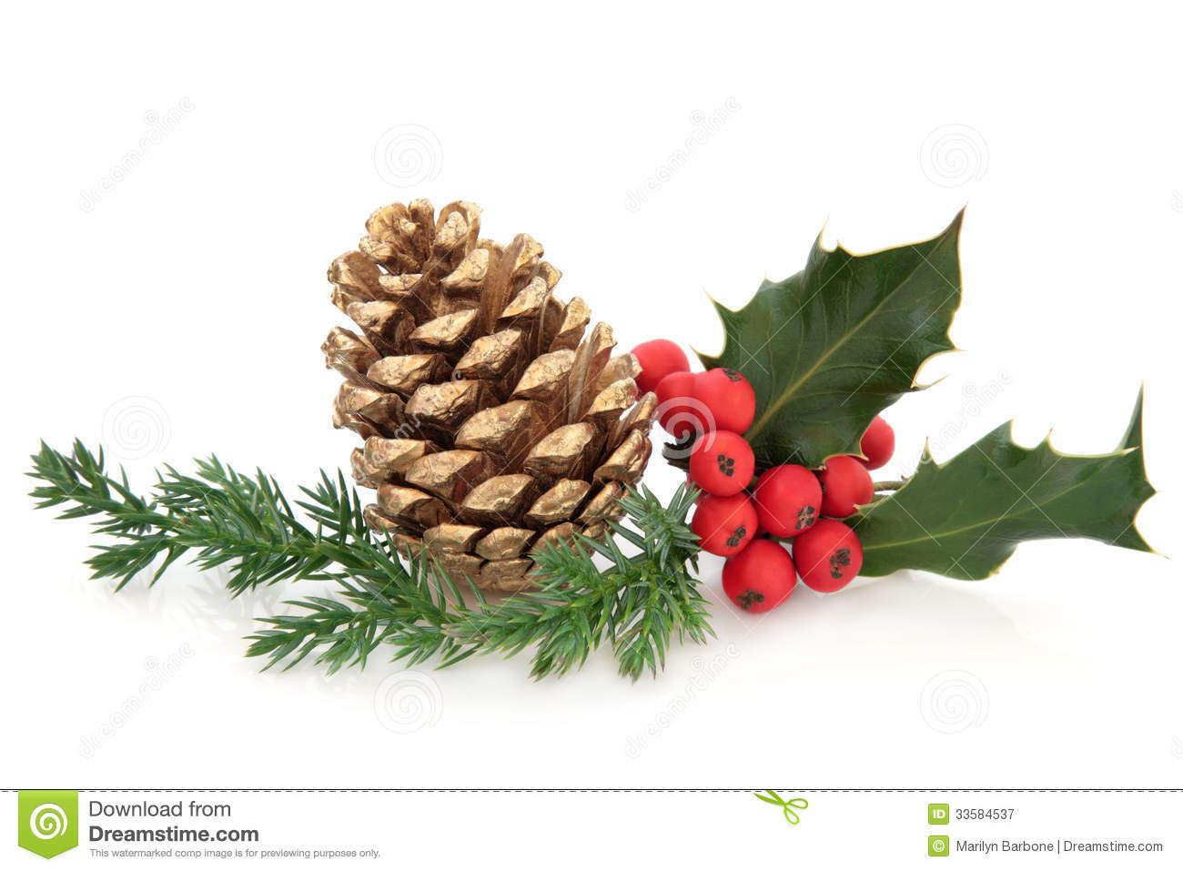 christmas pine cone drawing - photo #45