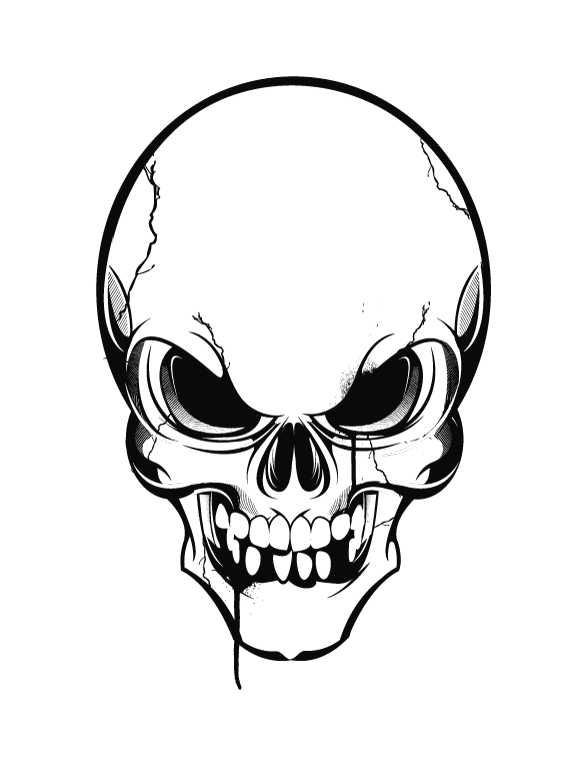 Skeleton Face Line Drawing : Skull vector clipart suggest