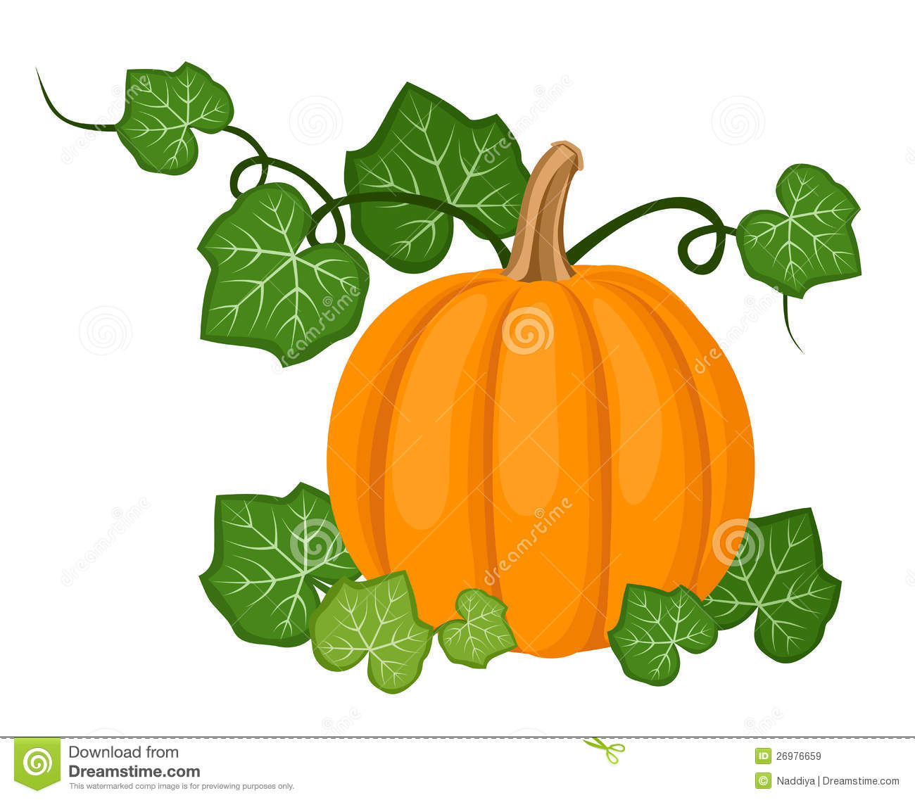 Vector Illustration Of Orange Pumpkin With Leaves Isolated On A White