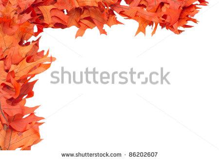 Corner Border Of Colorful Red Oak Leaves Stock Photo 86202607