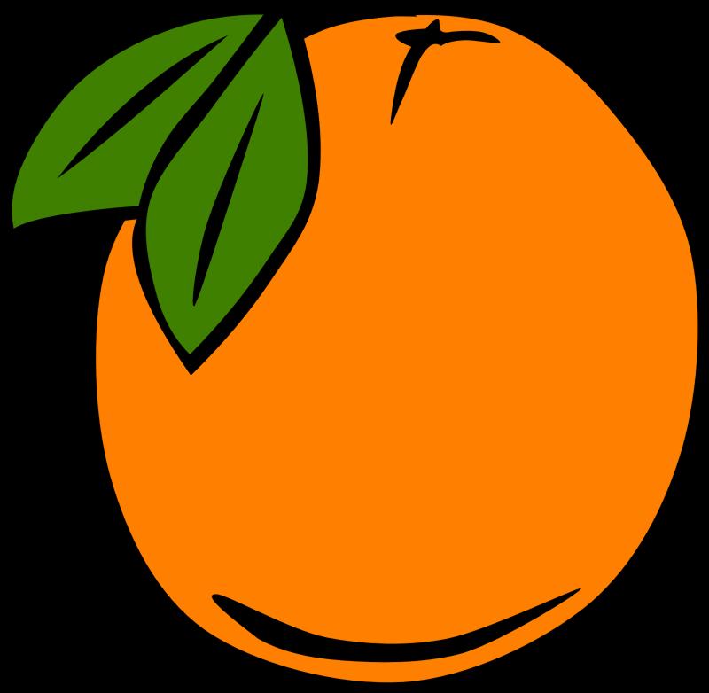 fruit orange simple clipart gerald suggest