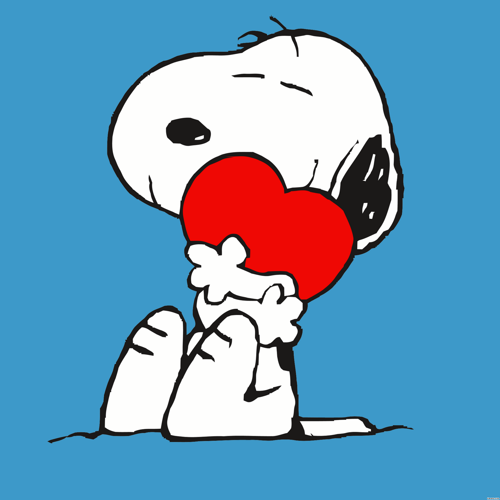 Snoopy Snoopy And Heart