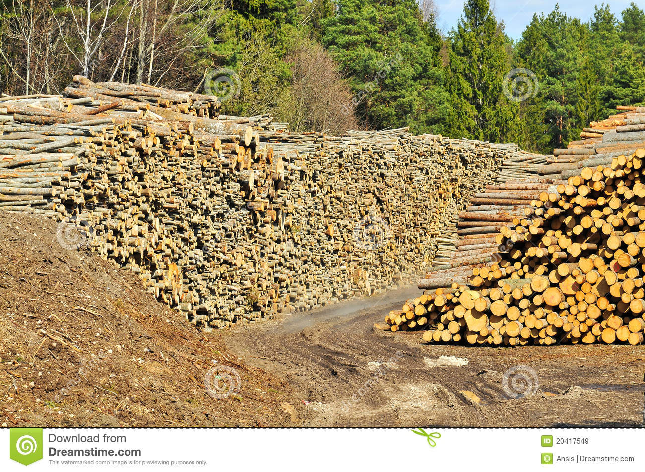 Lumber Pile Royalty Free Stock Images   Image  20417549