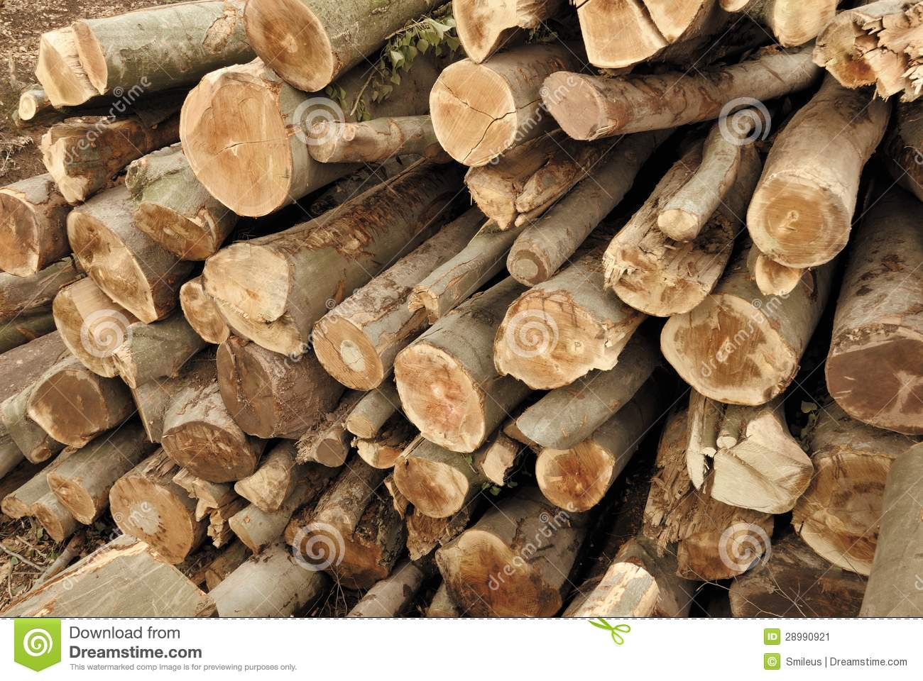 Pile Of Lumber Stock Image   Image  28990921