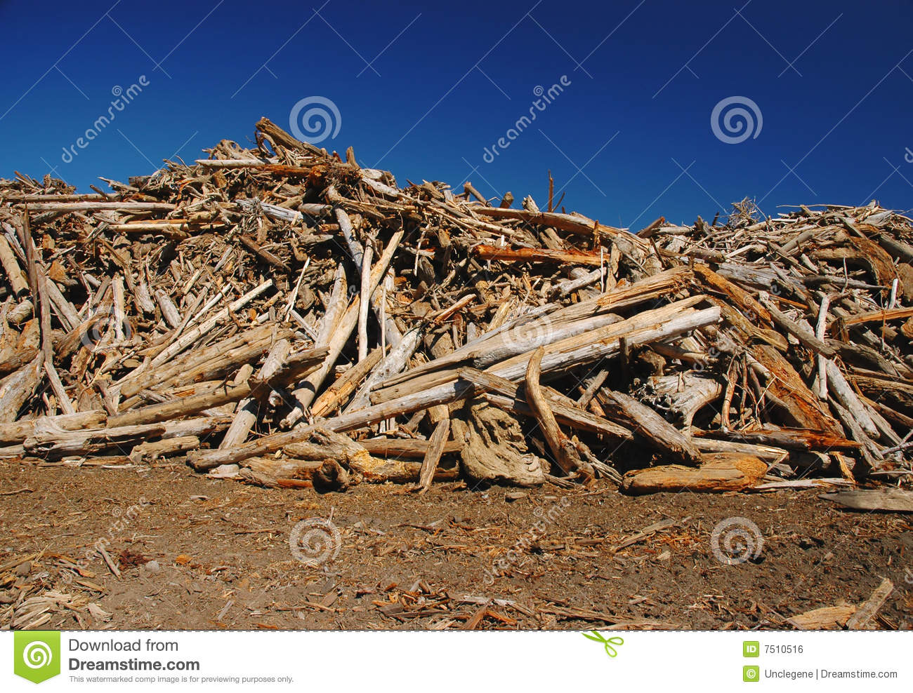 Pile Of Wood Royalty Free Stock Image   Image  7510516