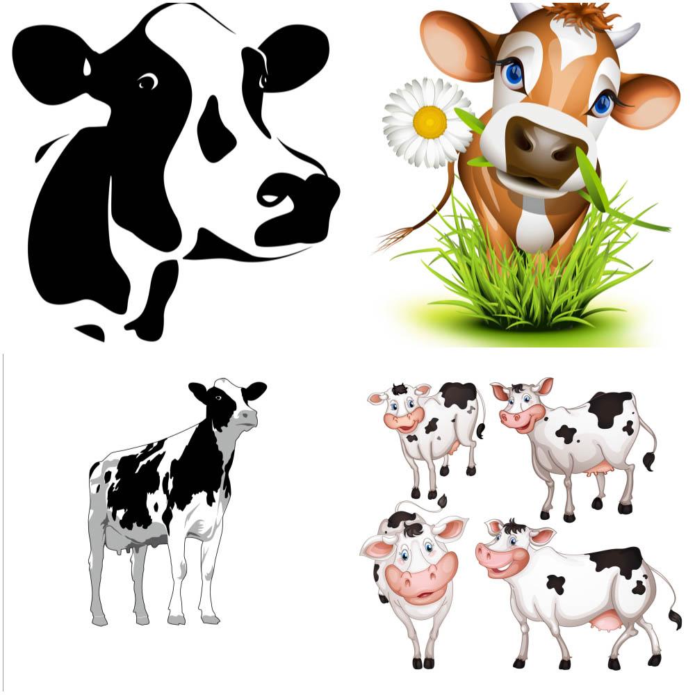написать, сказать коровы в разных ракурсах можно пойти