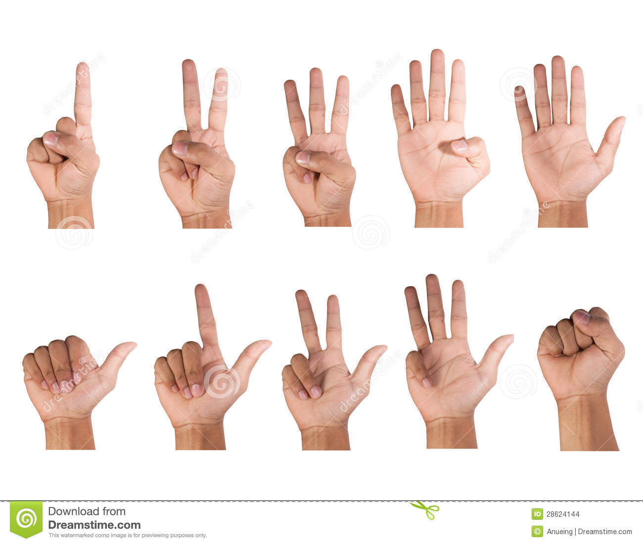 Fingers Counting Clipart Fingers Count 28624144 Jpg