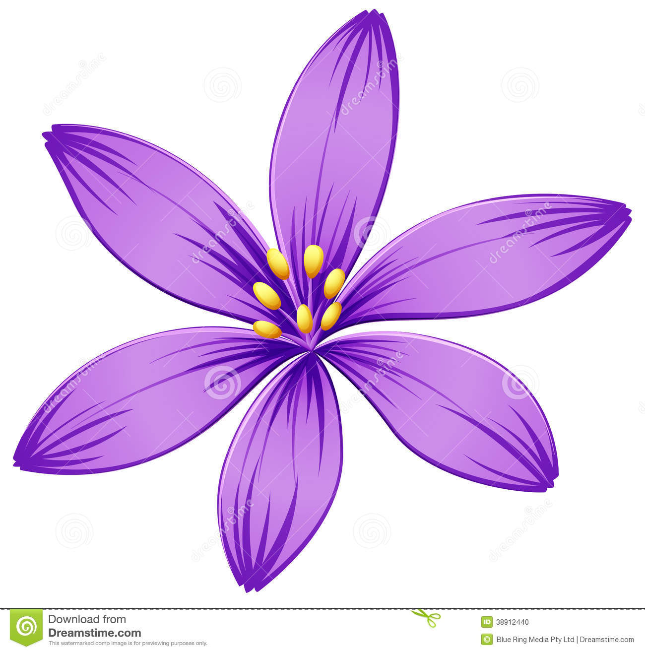 Illustration Of A Five Petal Purple Flower On A White Background