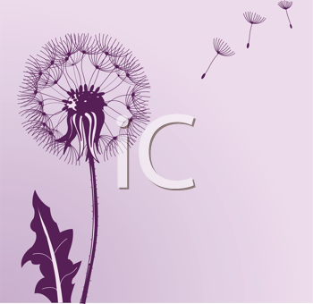 Royalty Free Dandelion Clip Art Flower Clipart