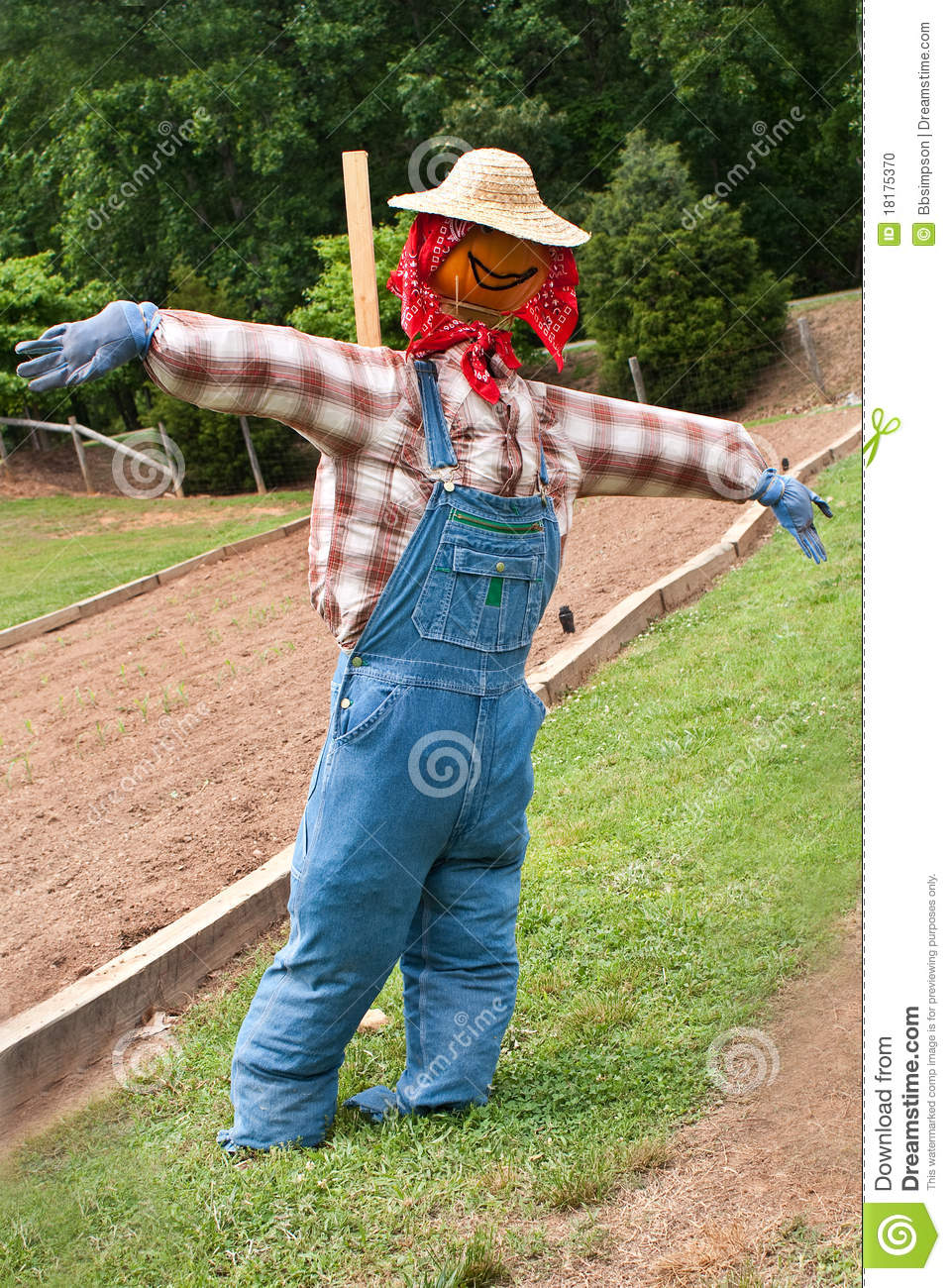 Scarecrow With Pumpkin Head Wearing Blue Jeans Overalls Plaid Flannel
