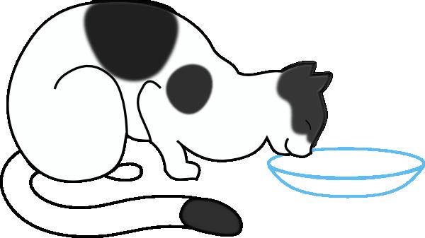 White Cat Drinking Clip Art At Clker Com   Vector Clip Art Online