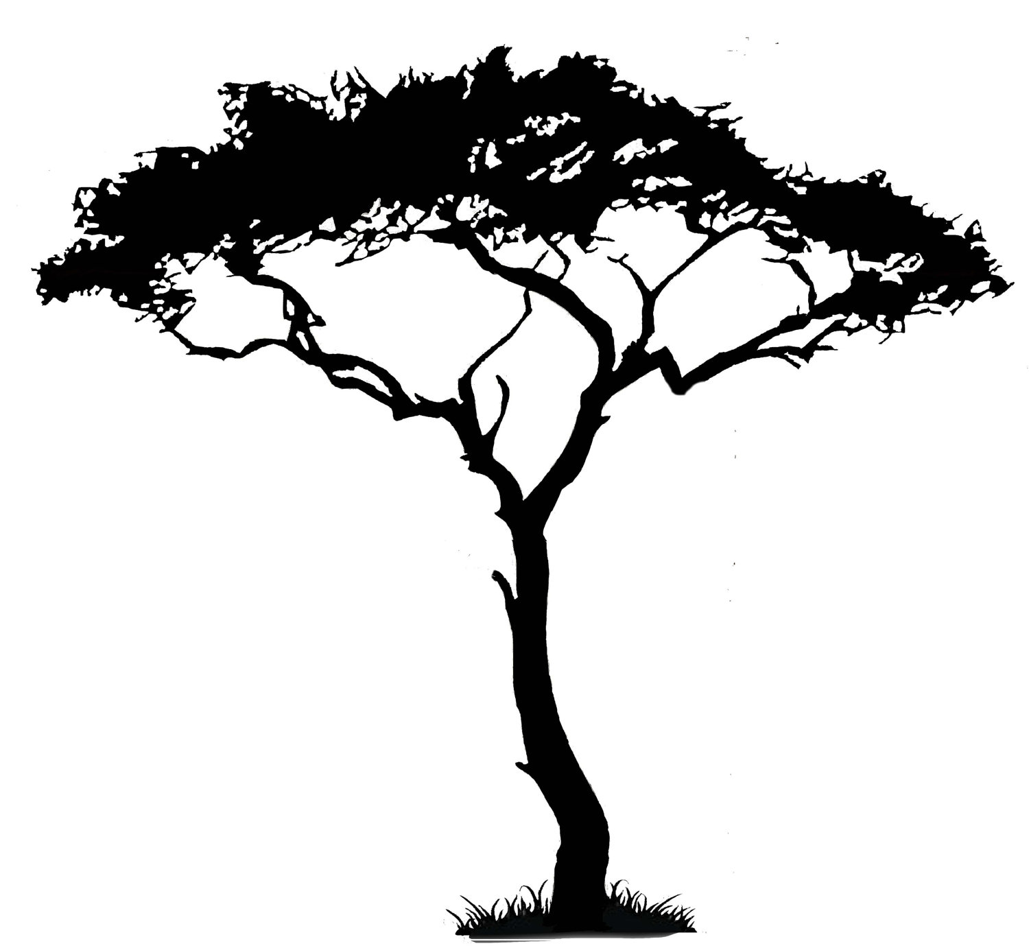 12 Acacia Tree Silhouette Clipart Free Cliparts That You Can Download