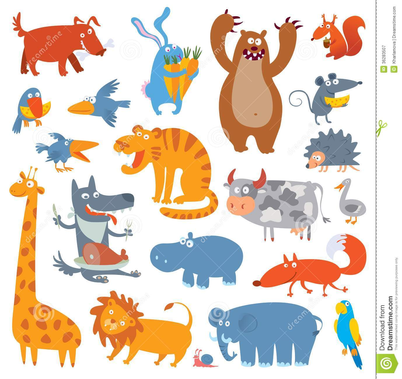 Cute Zoo Animals  Vector Illustration  Isolated On White Background