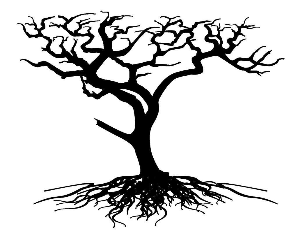 Oak Tree Silhouette With Roots 1000x1000 Jpg
