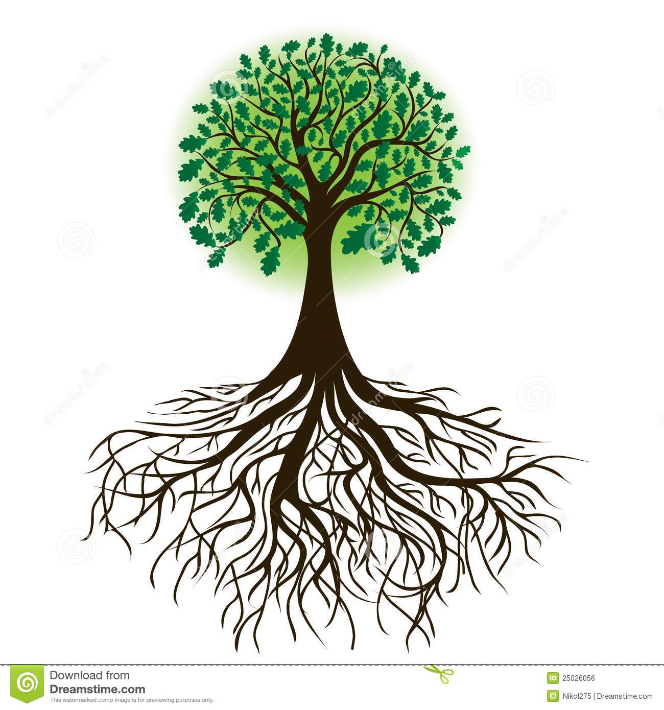 Oak Tree With Roots And Dense Foliage Vector Royalty Free Stock Image