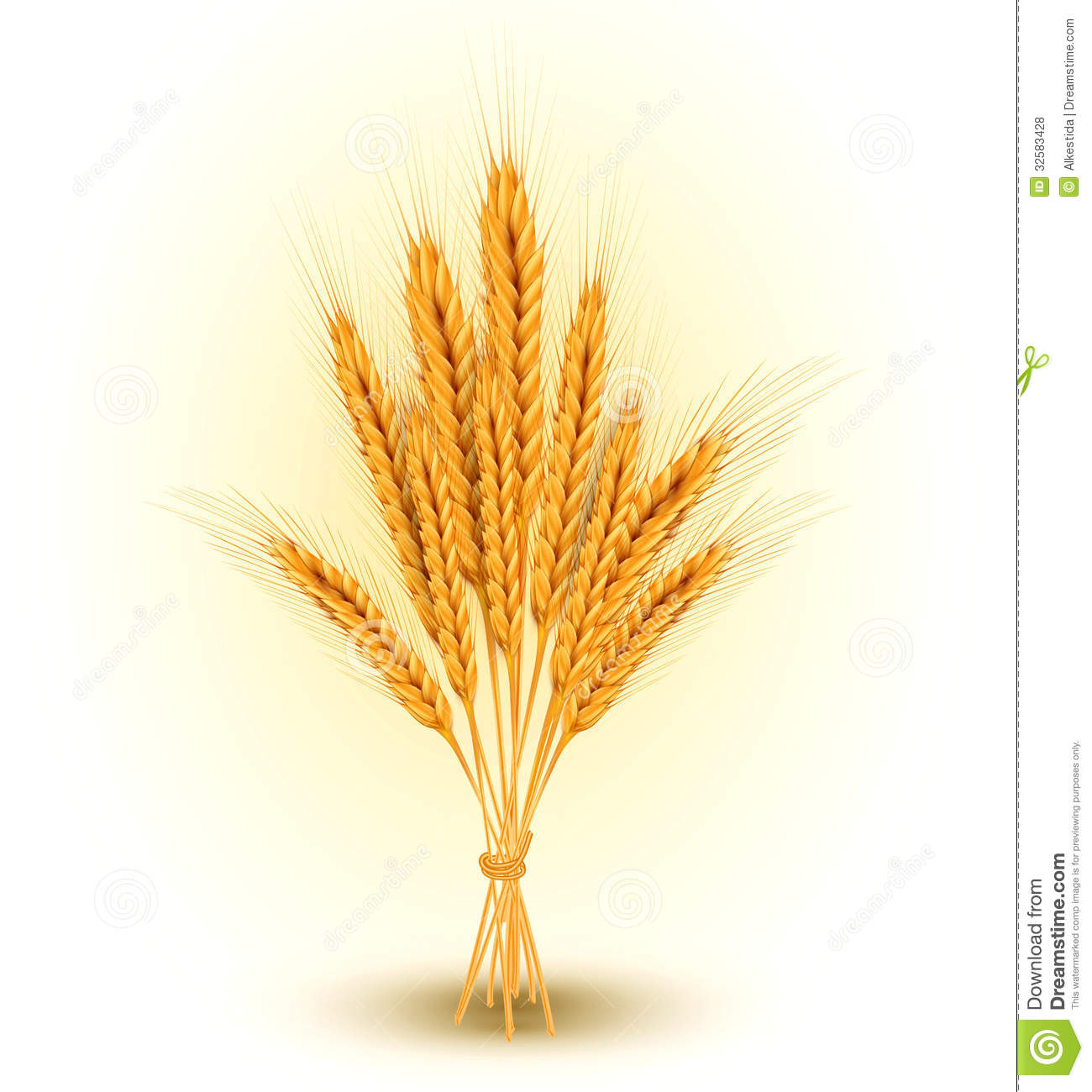 Vector Background With A Sheaf Of Golden Wheat Ear Royalty Free Stock
