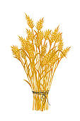 Wheat Clipart Illustrations  4561 Wheat Clip Art Vector Eps Drawings