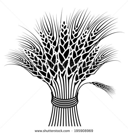 Wheat Sheaf Stock Photos Illustrations And Vector Art