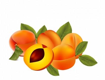 Peach Festival Clipart - Clipart Kid