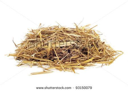 Hay Pile Clipart A Pile Of Straw On A White