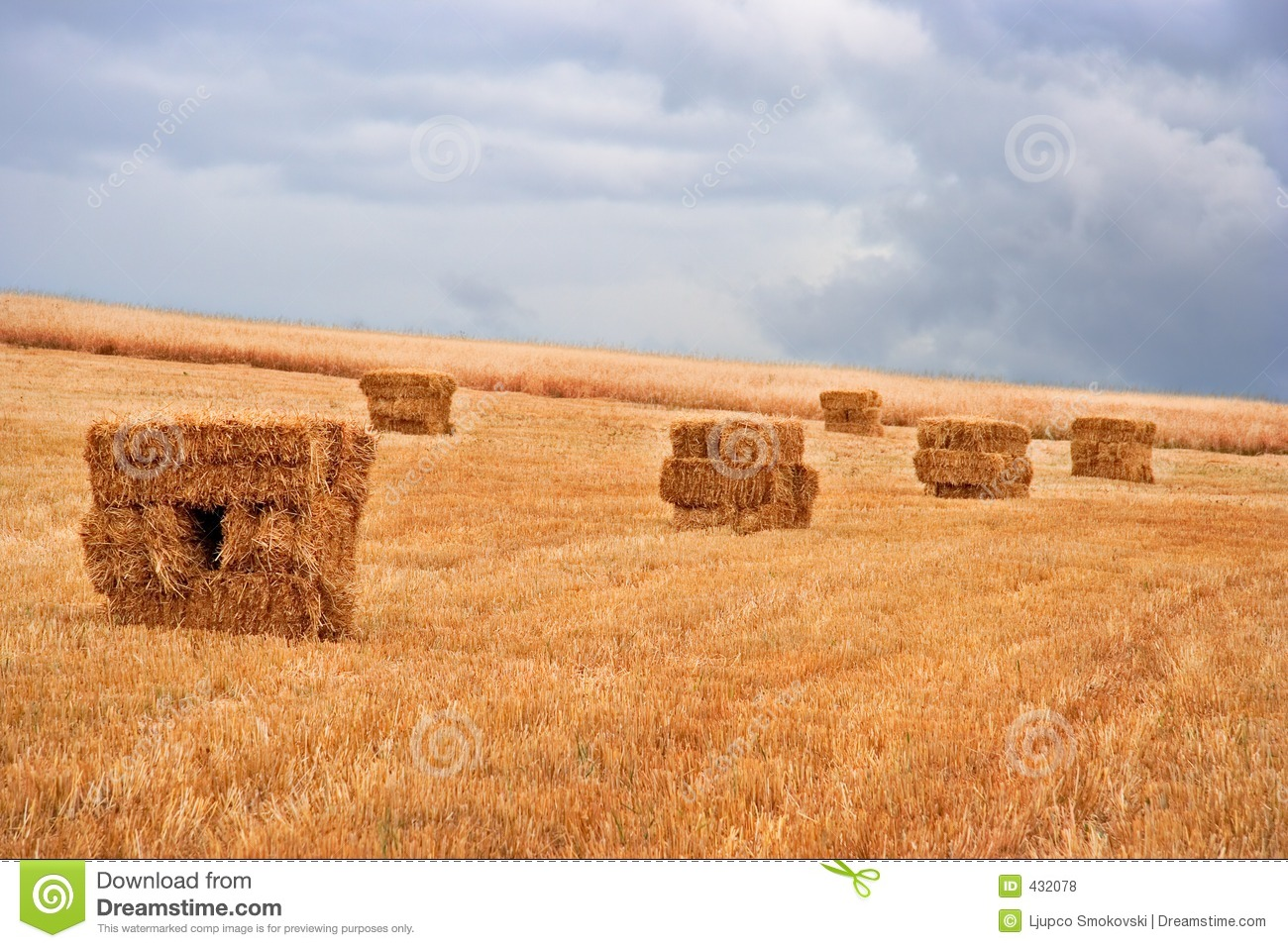 Hay Pile Royalty Free Stock Photos   Image  432078