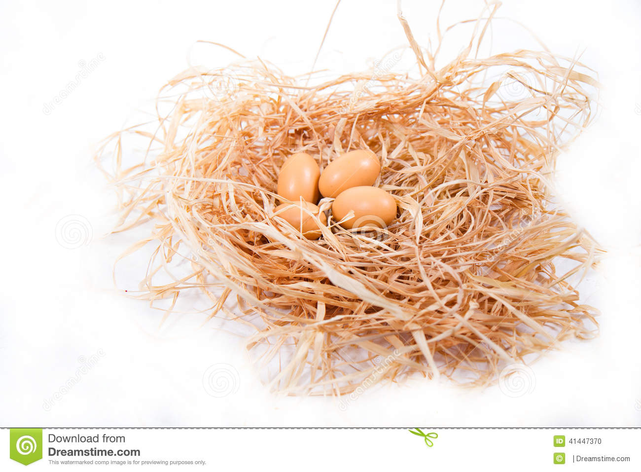 Nest  Four Chicken Brown Eggs On The Pile Of Hay On A White Background