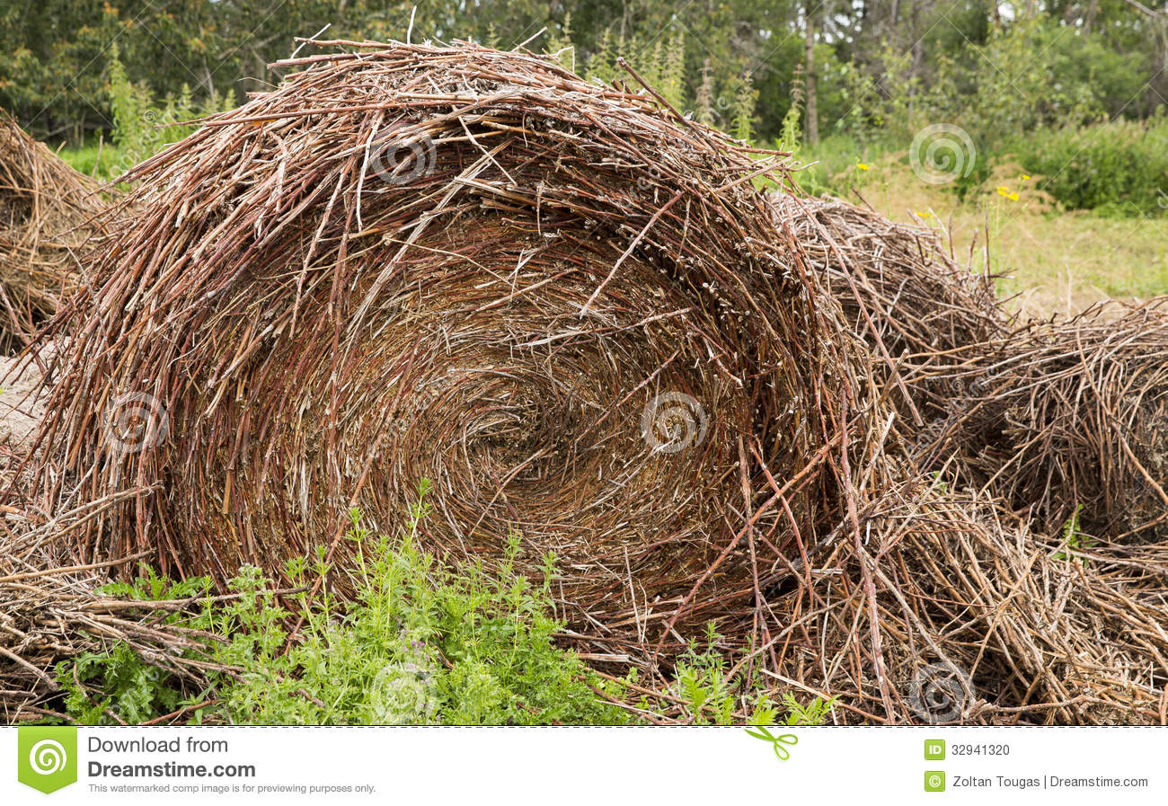 Old Pile Of Straw Or Hay Stock Photo   Image  32941320