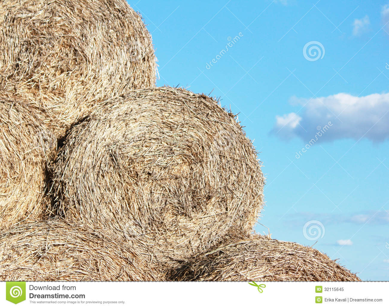 Pile Of Hay Royalty Free Stock Photo   Image  32115645