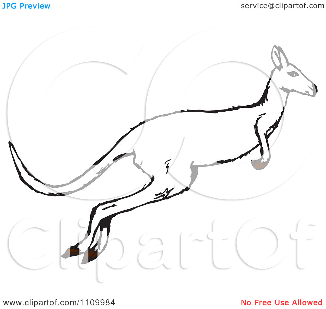 Clipart Black And White Jumping Kangaroo   Royalty Free Vector