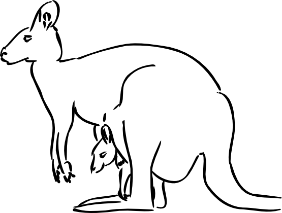 Kangaroo Clipart Black And White Kangaroo Black White Line Art Tatoo