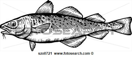 Clipart   A Black And White Drawing Of A Cod  Fotosearch   Search Clip