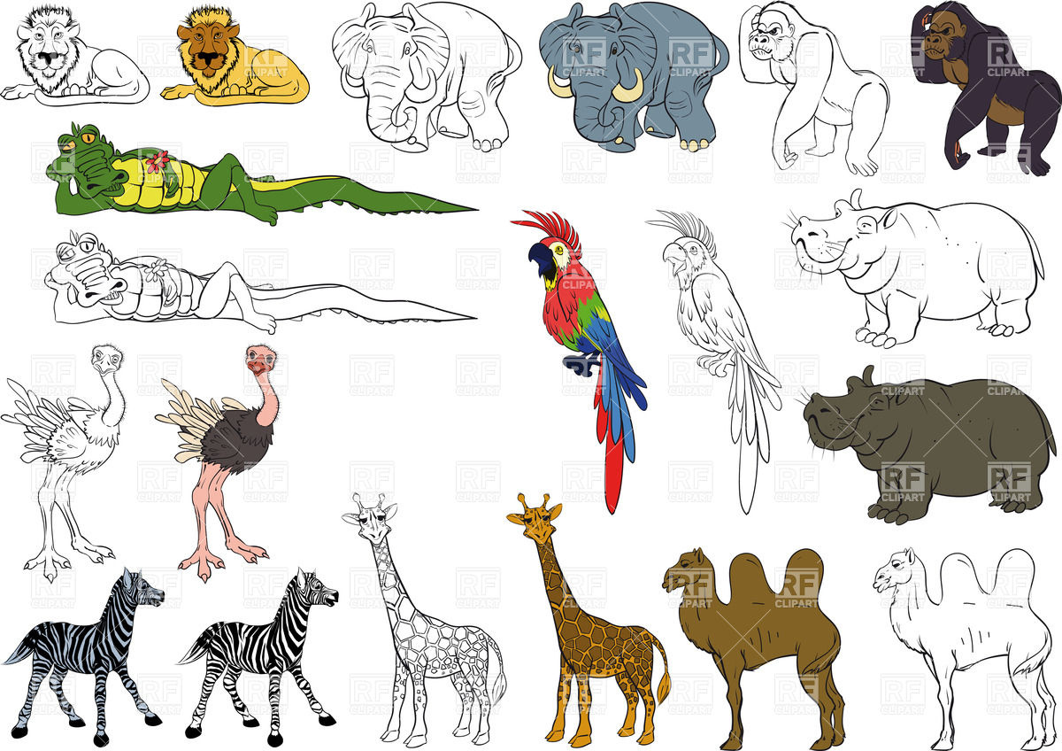 Funny Zoo Animal Clipart - Clipart Kid