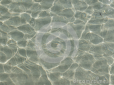Transparent Water Ripple Sand Waves And Sunlight Glare  Sea Floor