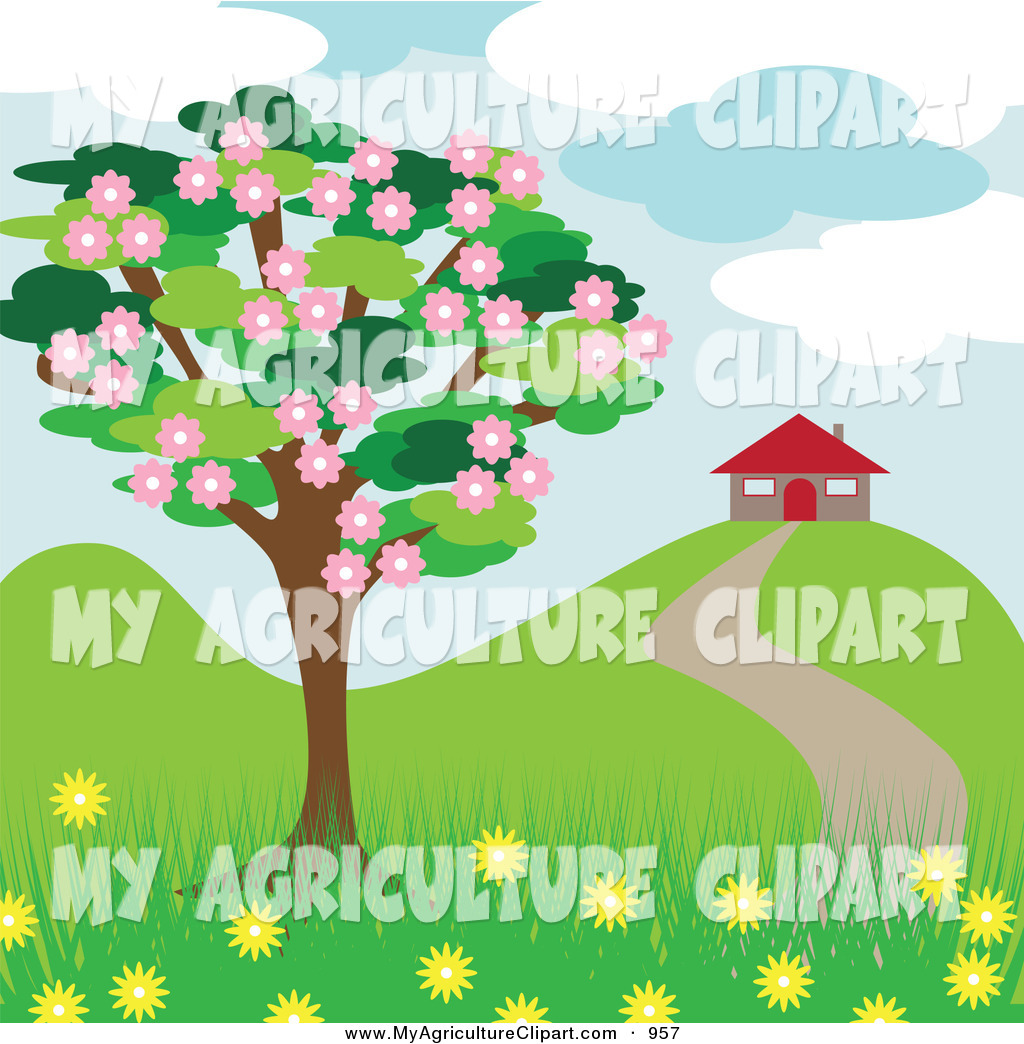 Clipart Of A Beautiful Blossoming Tree Near A House In The Spring On