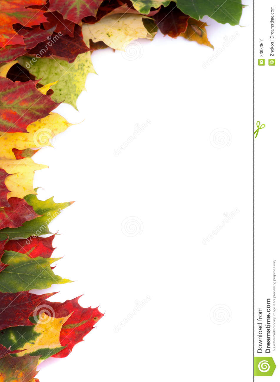 Maple Leaf Border Clipart - Clipart Suggest