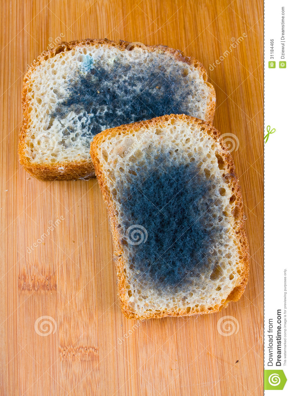 Moldy Sandwich Clipart Royalty Free Stock Image  Moldy Bread