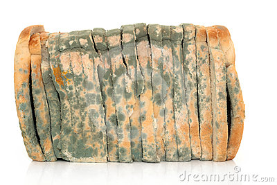 Mouldy Sliced Bread Stock Images   Image  24320004