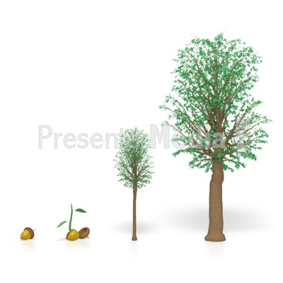 Tree Growing   Wildlife And Nature   Great Clipart For Presentations