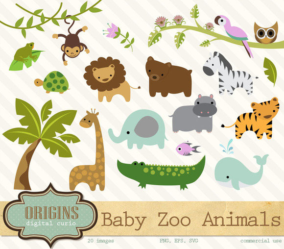 Baby Zoo Animals Clipart   Illustrations On Creative Market